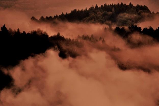 写真: 朝霧