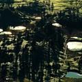 写真: 光る池塘