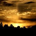 写真: 陽が昇る