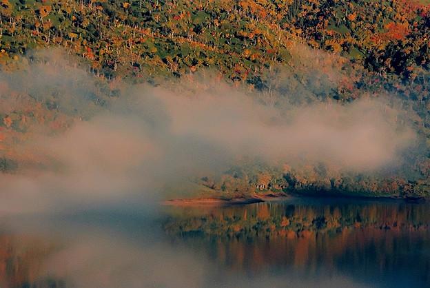 Photos: 霧漂う