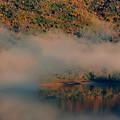 写真: 霧漂う
