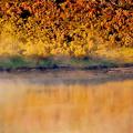 写真: 湖畔秋景