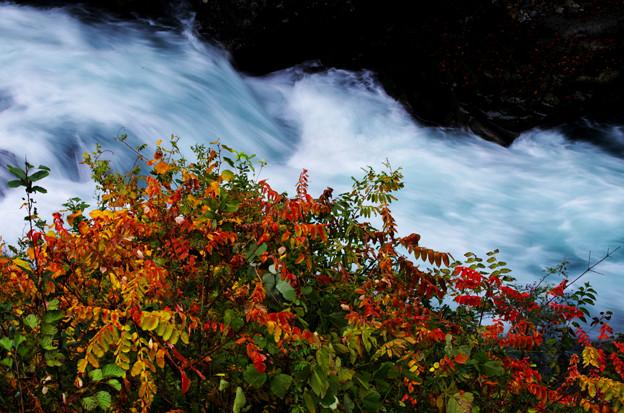 谷間の渓流