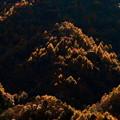Photos: 輝く山間