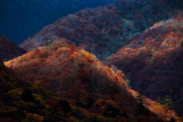 Photos: 秋光