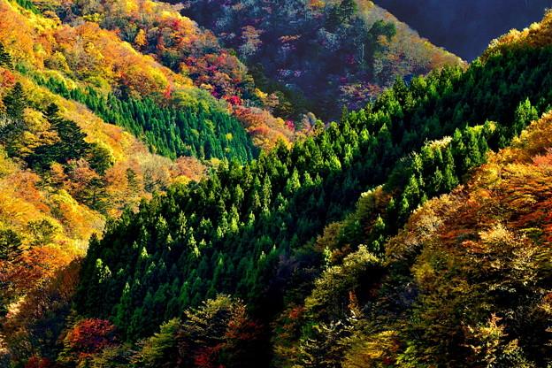 紅葉の山々