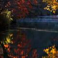 写真: 湖面に映る