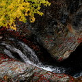 晩秋の流れ