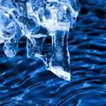 Photos: 氷の造形2