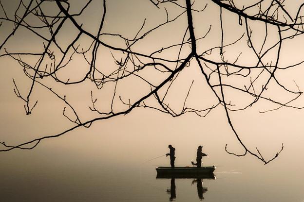Photos: 湖の朝