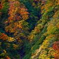 Photos: 染まる山間
