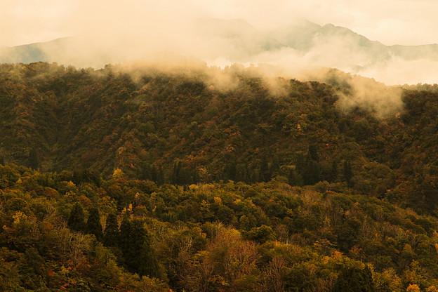 山古志の風景4