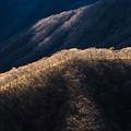 Photos: 冬の尾根