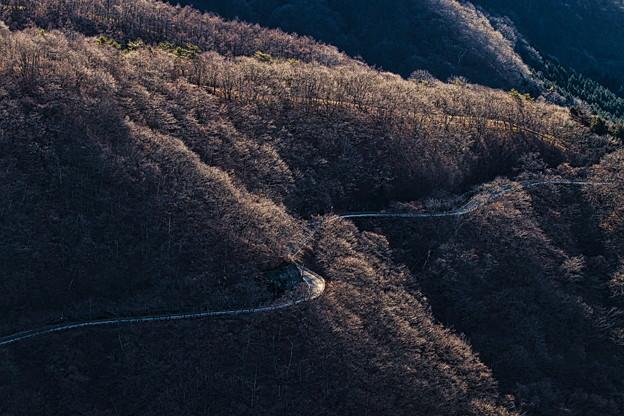 Photos: 峠の道