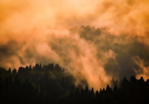 霧染まる朝