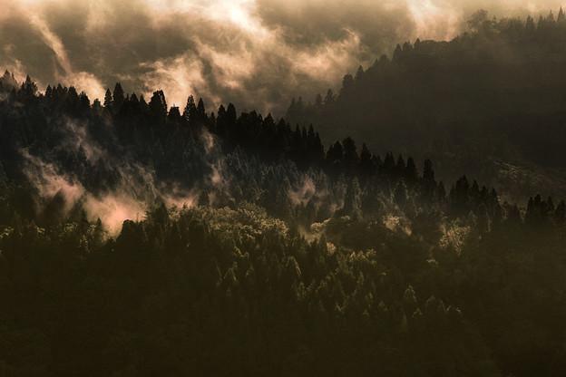 Photos: 早朝の山