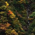 Photos: 秋の谷間