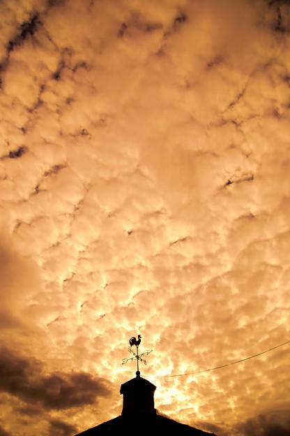 Photos: 夕雲覆う