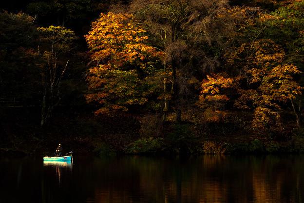 Photos: 秋の湖畔