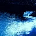 湖面の浮氷