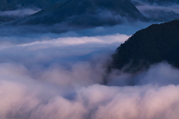 Photos: 雲海