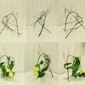 Photos: 枝の構成とその展開