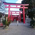 Photos: 門松