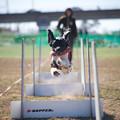 Photos: Jump