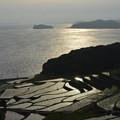 Photos: 土谷棚田、光る。