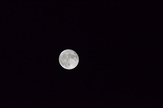 ある日の月。