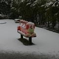 Photos: 降る雪経る月