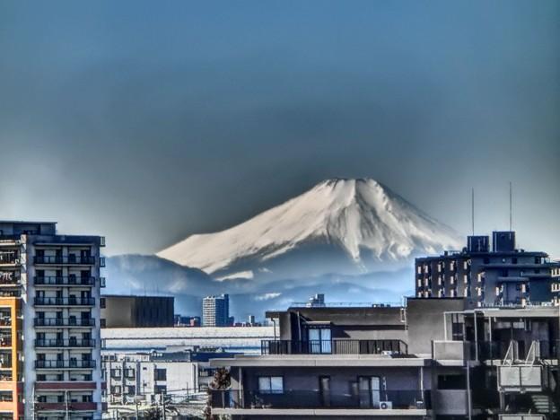 写真: 東北新幹線から見る富士山