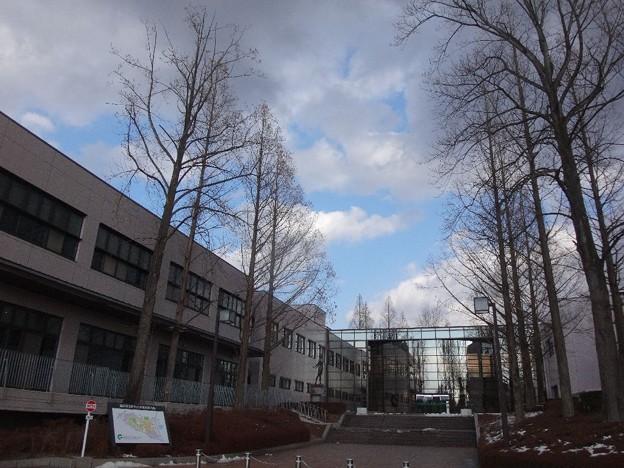 大学の玄関