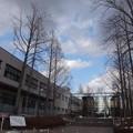 写真: 大学の玄関