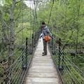写真: つり橋にて