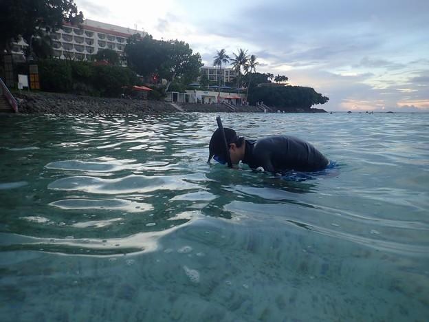写真: ホテル前の海にて