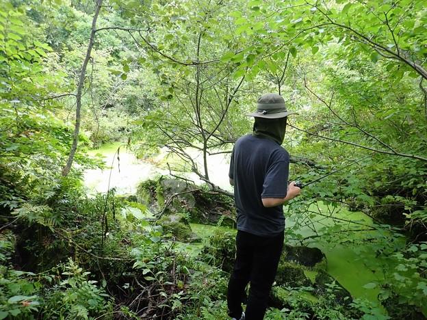 森の釣り人