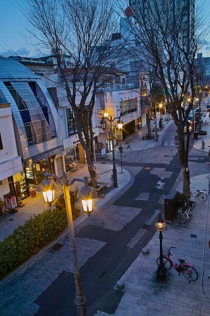 パセオ通りの街灯