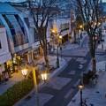 Photos: パセオ通りの街灯