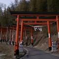 Photos: 高屋敷稲荷の鳥居