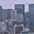 Photos: 高層ビル群