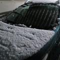 Photos: ボンネットの雪