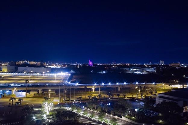 シンデレラ城の夜