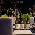Photos: 二本松の菊人形展