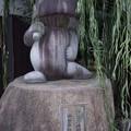 Photos: 蛙の石像