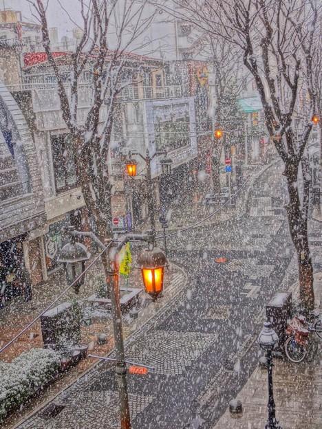 パセオ通りは吹雪