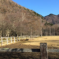 Photos: 朝の牧場