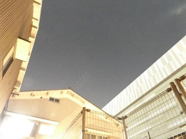 Photos: ベテルギウスの減光