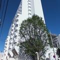 Photos: 中村記念病院