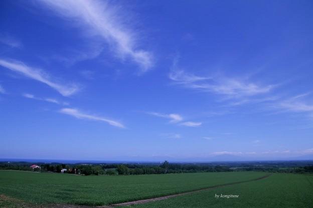 写真: 遥か知床連山が・・・